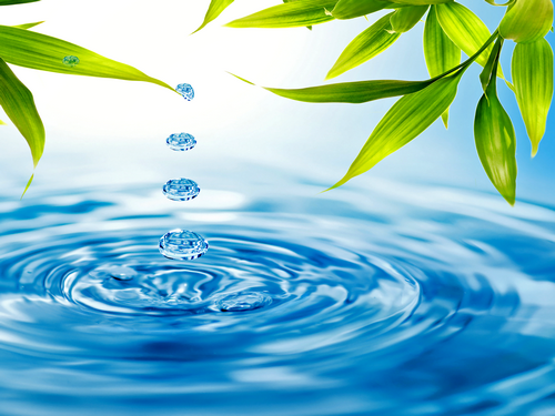 blue-drops-greens-leaves-tw2011.png